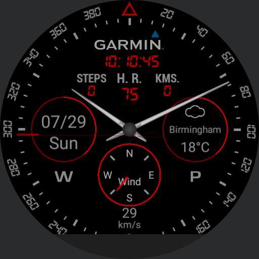 Garmin full info black  Copy