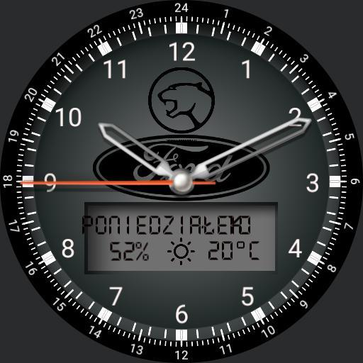 Cougar watch