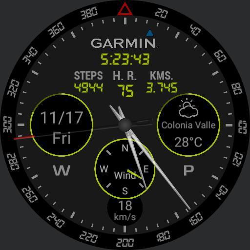 Garmin full info black