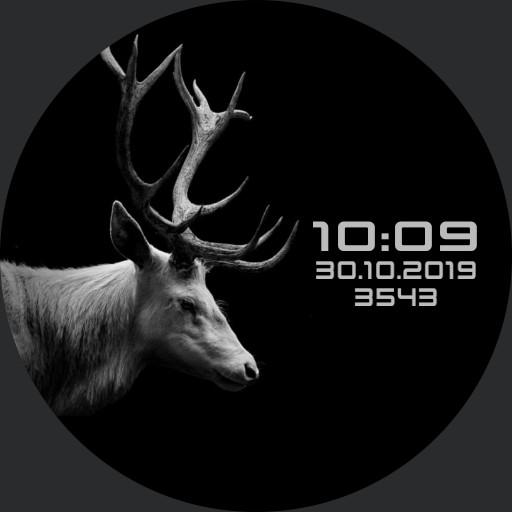 MEDVED.evg Animal 01