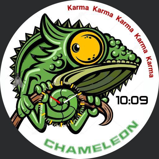 Karma Chameleon Copy