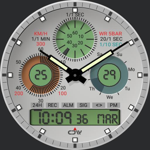 CJW 100 memory watch