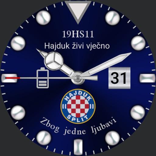 HS1911