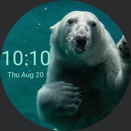 White Bear watch