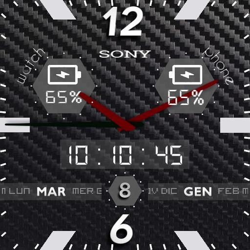 Sony analog Copy