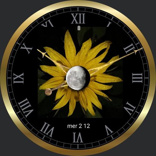 montre tournesol