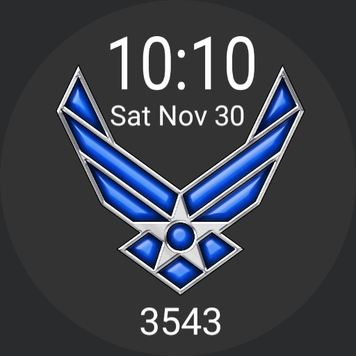 Air Force with step count