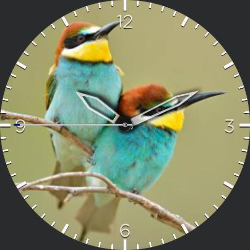 Nspz_73 Bird theme