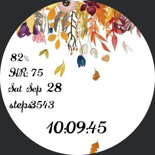 Fall watch