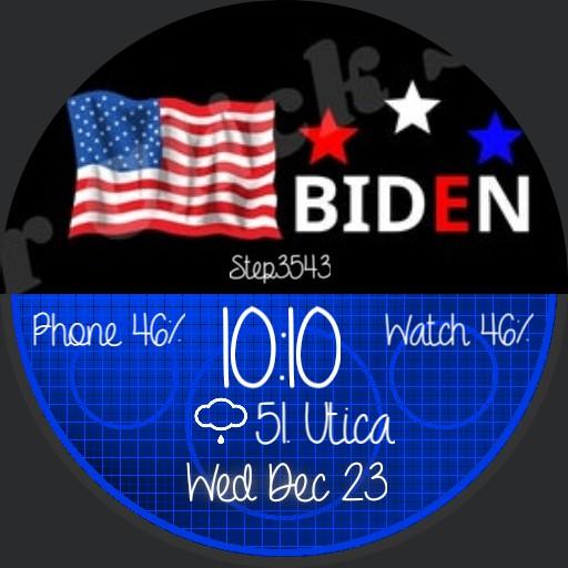 Biden 2020 Copy by geri