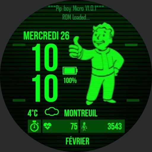 Pip Boy Micro