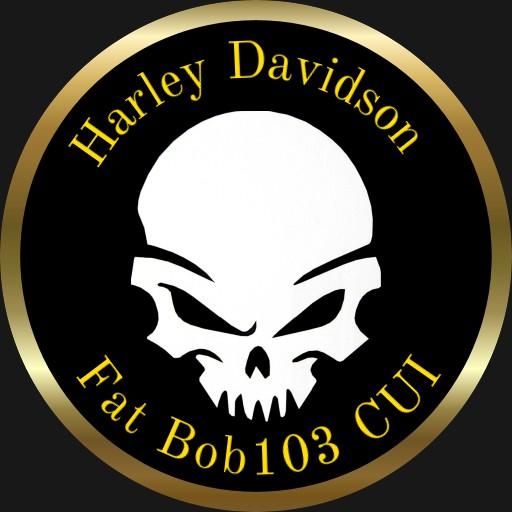 Fat Bob 103 CUI Copy