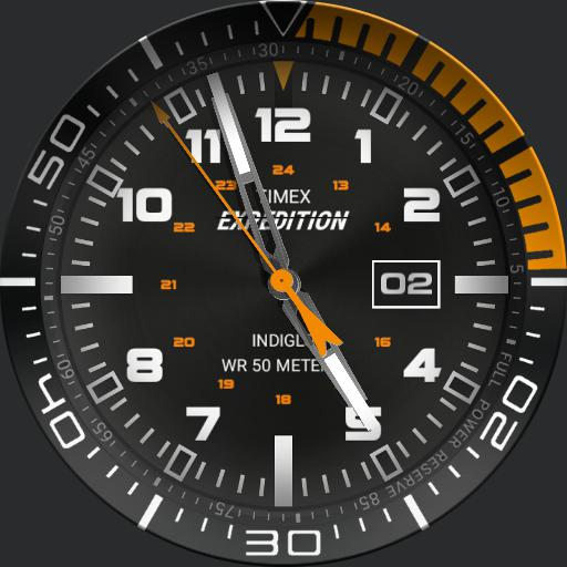 Timex Expedition Bezel or not