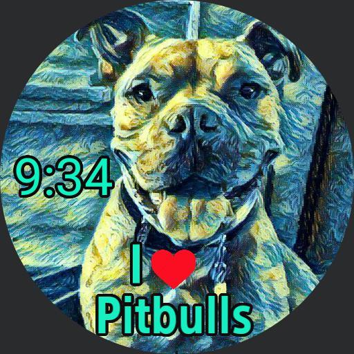 Starry Nites Pitbull