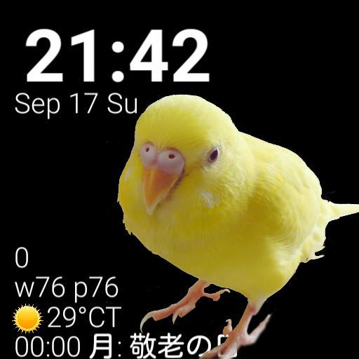 Chibikko Watch