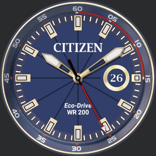 Citizen Eco
