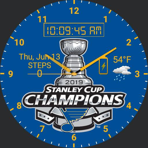 2019 Stanley Cup Champs