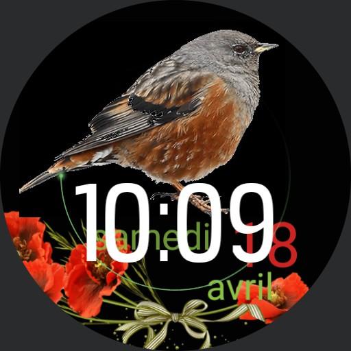 LEBbird