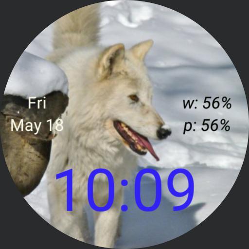 cjb wolf
