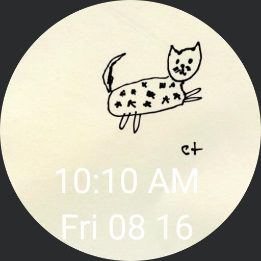 starry cat