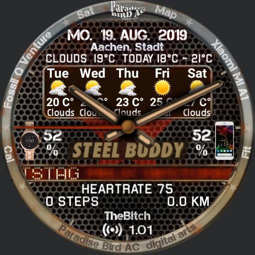 Steel Buddy Analog