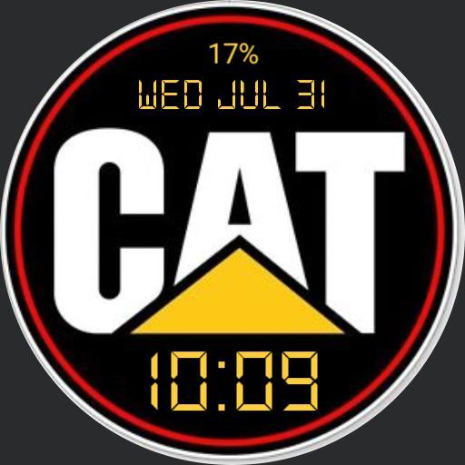 CAT WATCH SIMPLE