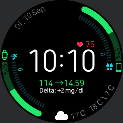V.2.1/EN Blood Glucose Health Dashboard with xDrip Integration without WorkOut Button