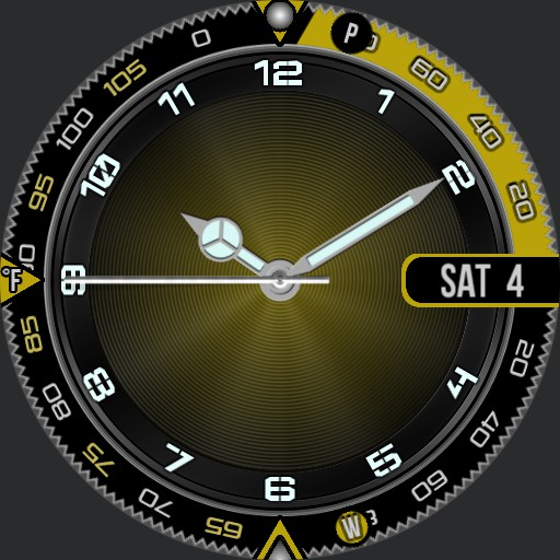 JSM Information Bezel 2.2 weather wheel