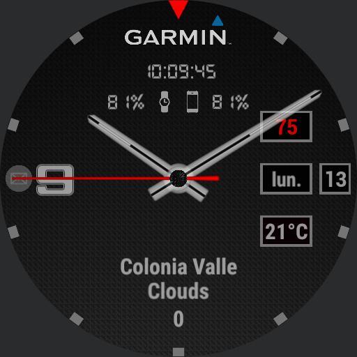 Garmin full info  gray, green, white  Copy
