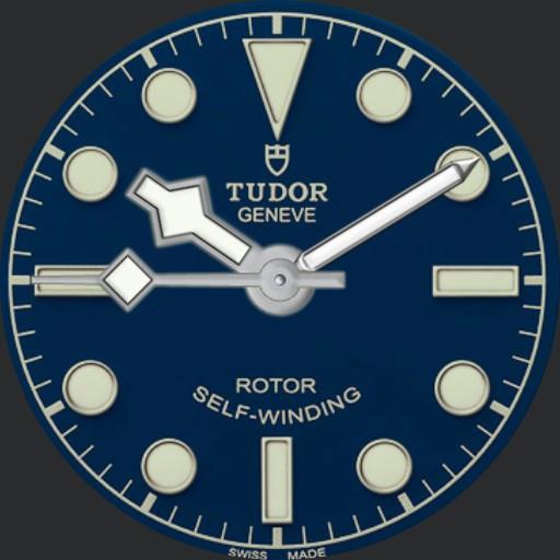 Diz Tudorish diver