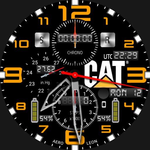 AeroLeon Cat Pilot V02