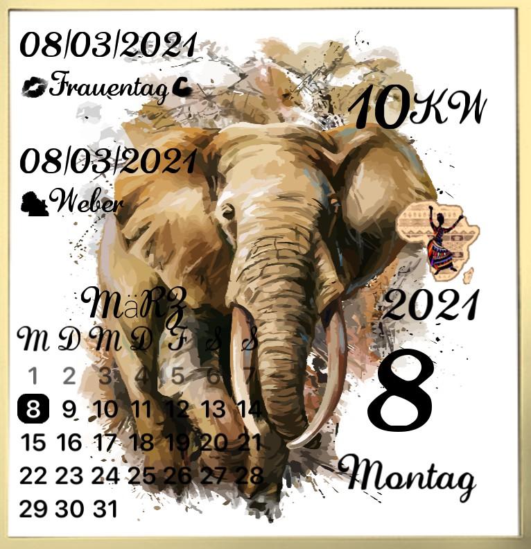 Kalender gross Serie Afrika