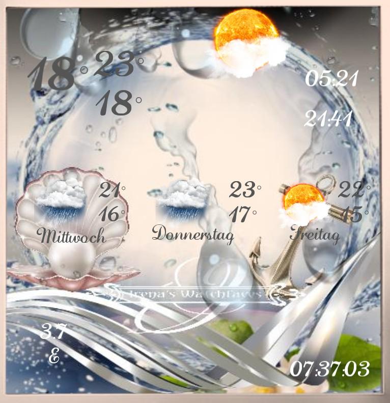 Wetter Seashell