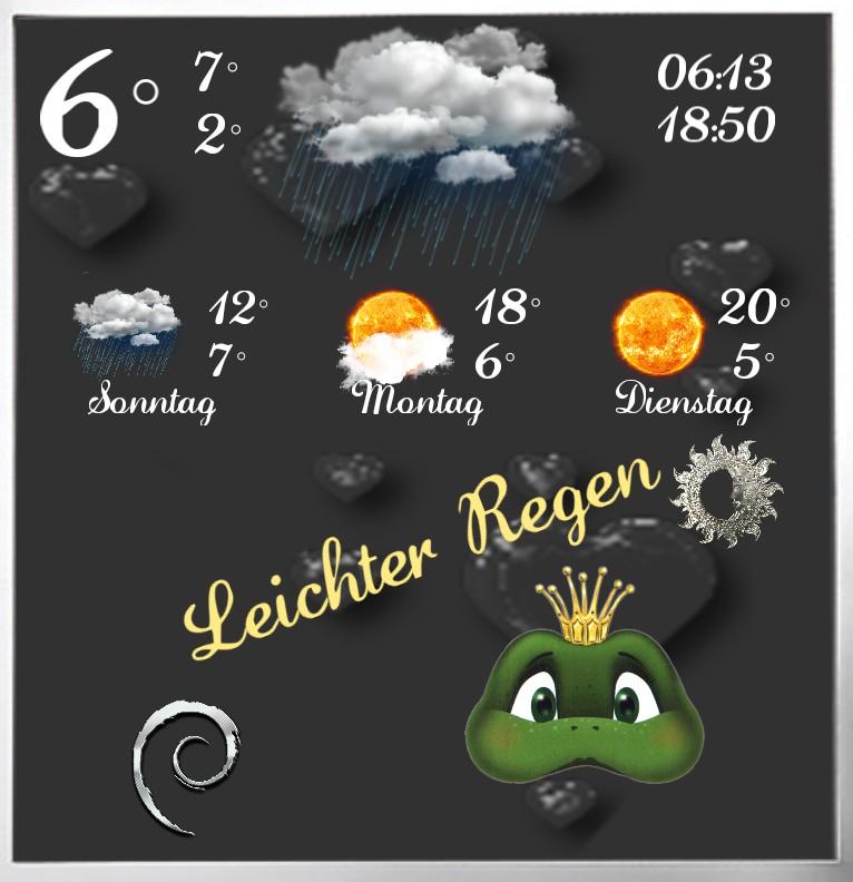 Widget Wetter Frog