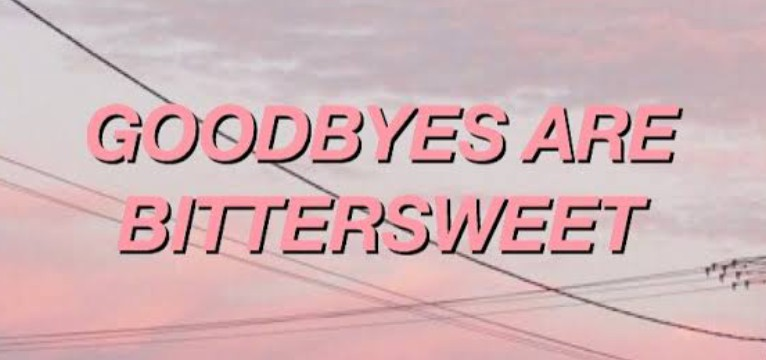 good byes are bitter-sweet