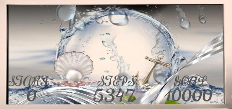 Steps Seashell