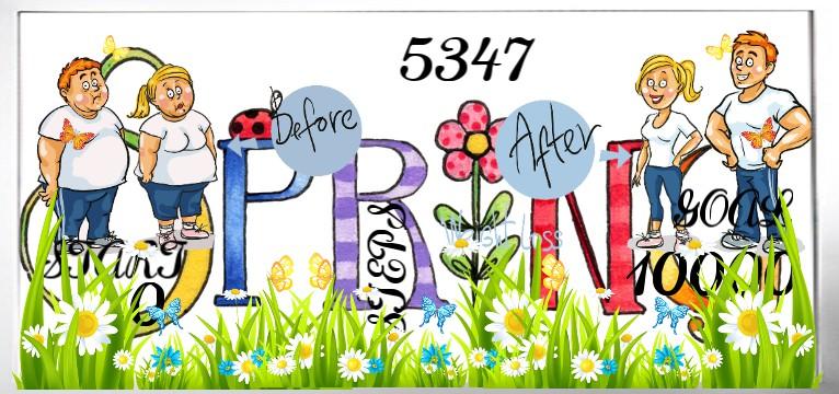 Step Spring 1