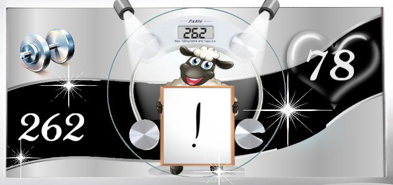 Herzschlag Kalorienverbrauch Diamond Black Sheep