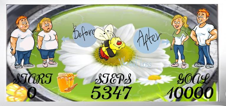 Step Flower Time
