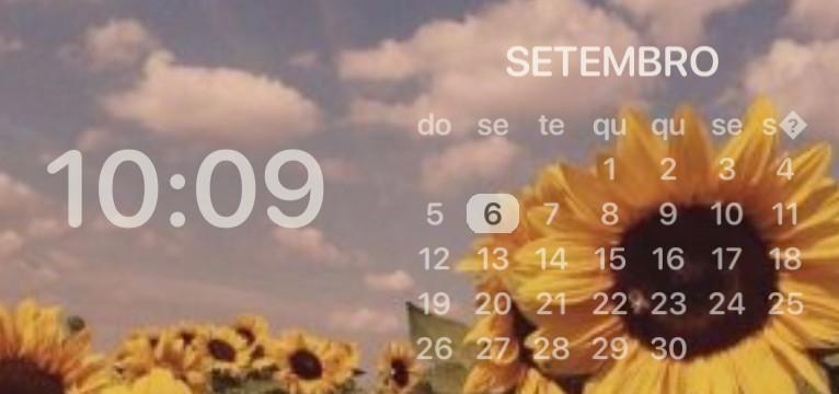 calendario girassol/ sunflower calendar