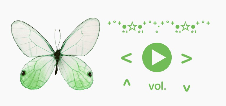 butterfly music control