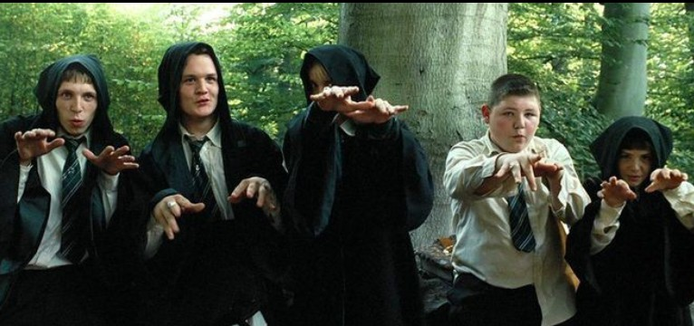 Draco and the squad