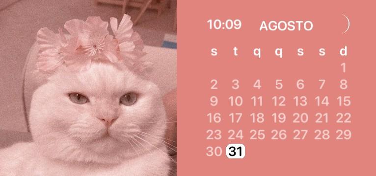 pink cat calendar