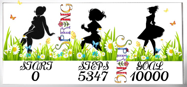 Step counter Spring 1