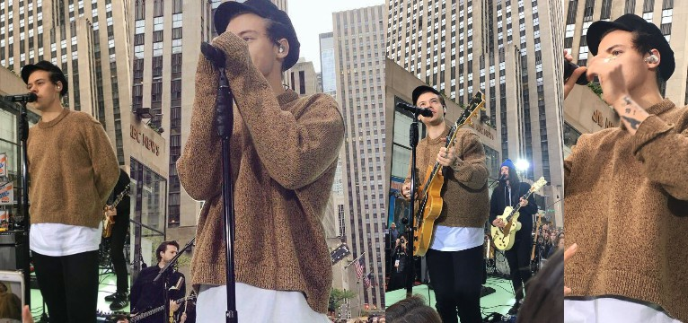 harry styles brown edition