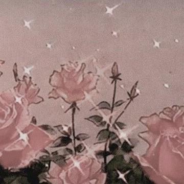 aesthetic roses