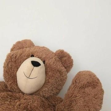 aesthetic brown bear