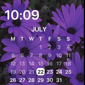 purple widget