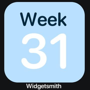 Week in year Copy