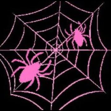 oooo spiders